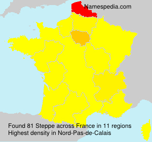 Surname Steppe in France