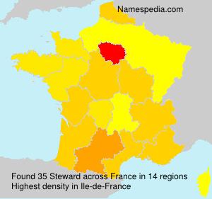 Steward - France