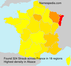 Surname Straub in France