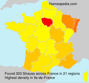 Surname Strauss in France
