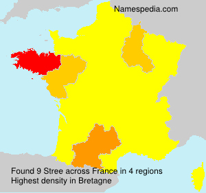 Surname Stree in France