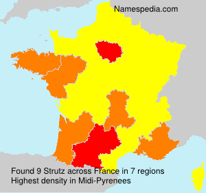 Surname Strutz in France