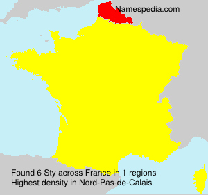 Surname Sty in France