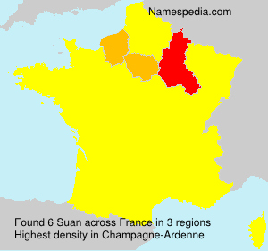 Surname Suan in France