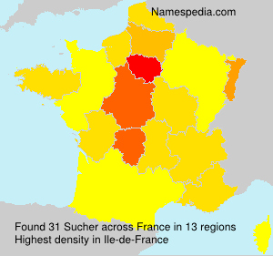 Surname Sucher in France