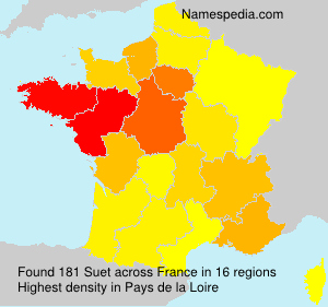 Surname Suet in France
