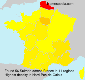 Surname Sulmon in France