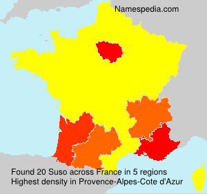 Surname Suso in France