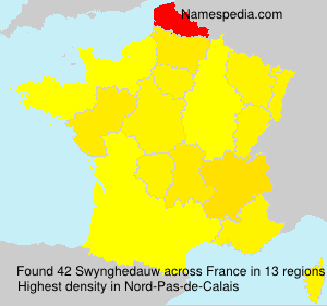 Surname Swynghedauw in France