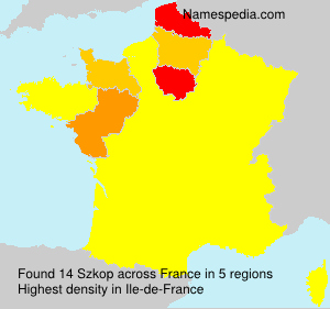 Surname Szkop in France