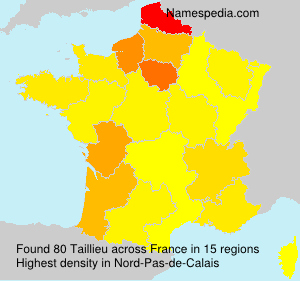 Surname Taillieu in France