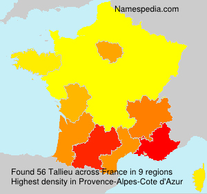 Surname Tallieu in France