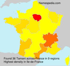 Surname Tamani in France