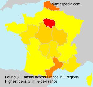 Surname Tamimi in France