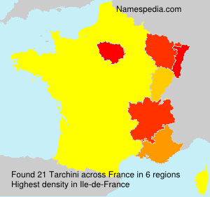 Surname Tarchini in France