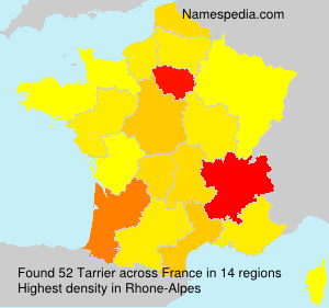 Surname Tarrier in France