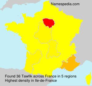 Surname Tawfik in France