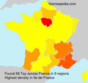 Surname Tay in France