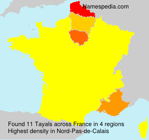 Surname Tayals in France