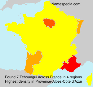 Surname Tchoungui in France