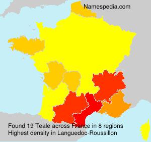 Surname Teale in France