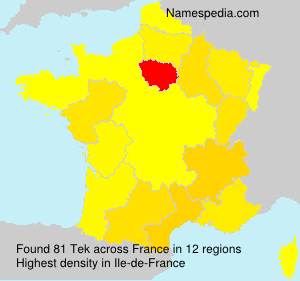 Surname Tek in France