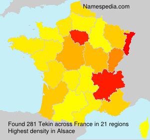 Familiennamen Tekin - France