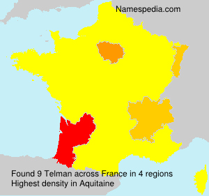 Surname Telman in France
