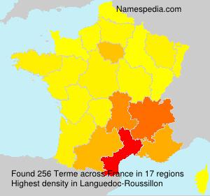 Surname Terme in France