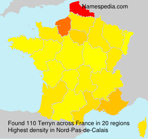 Surname Terryn in France
