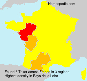 Surname Texer in France