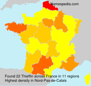 Surname Thieffin in France