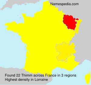 Surname Thimm in France