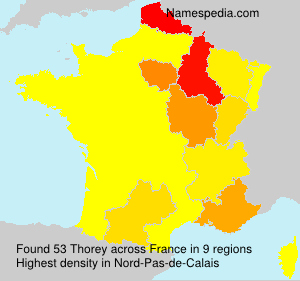 Surname Thorey in France
