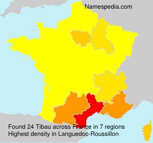 Surname Tibau in France