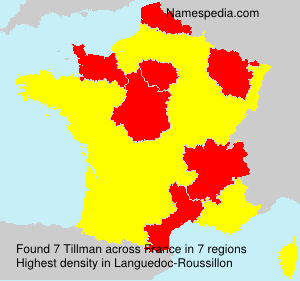Surname Tillman in France
