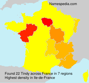 Surname Tindy in France