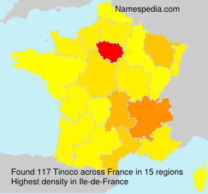 Surname Tinoco in France