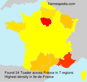 Surname Toader in France