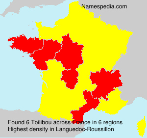 Surname Toilibou in France