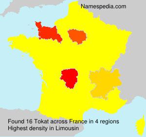 Familiennamen Tokat - France