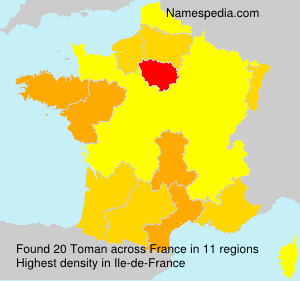Surname Toman in France