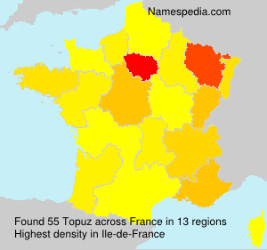Surname Topuz in France