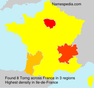 Surname Torng in France