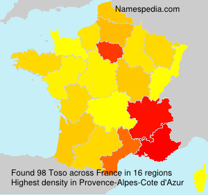 Surname Toso in France