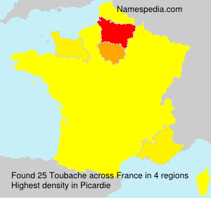 Surname Toubache in France