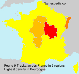 Surname Trepka in France