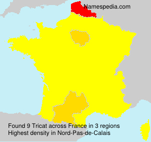 Surname Tricat in France