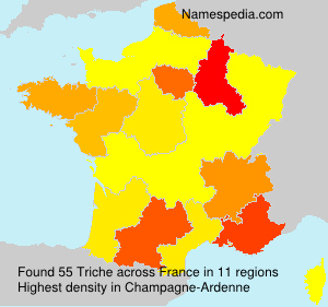Surname Triche in France