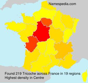 Familiennamen Tricoche - France